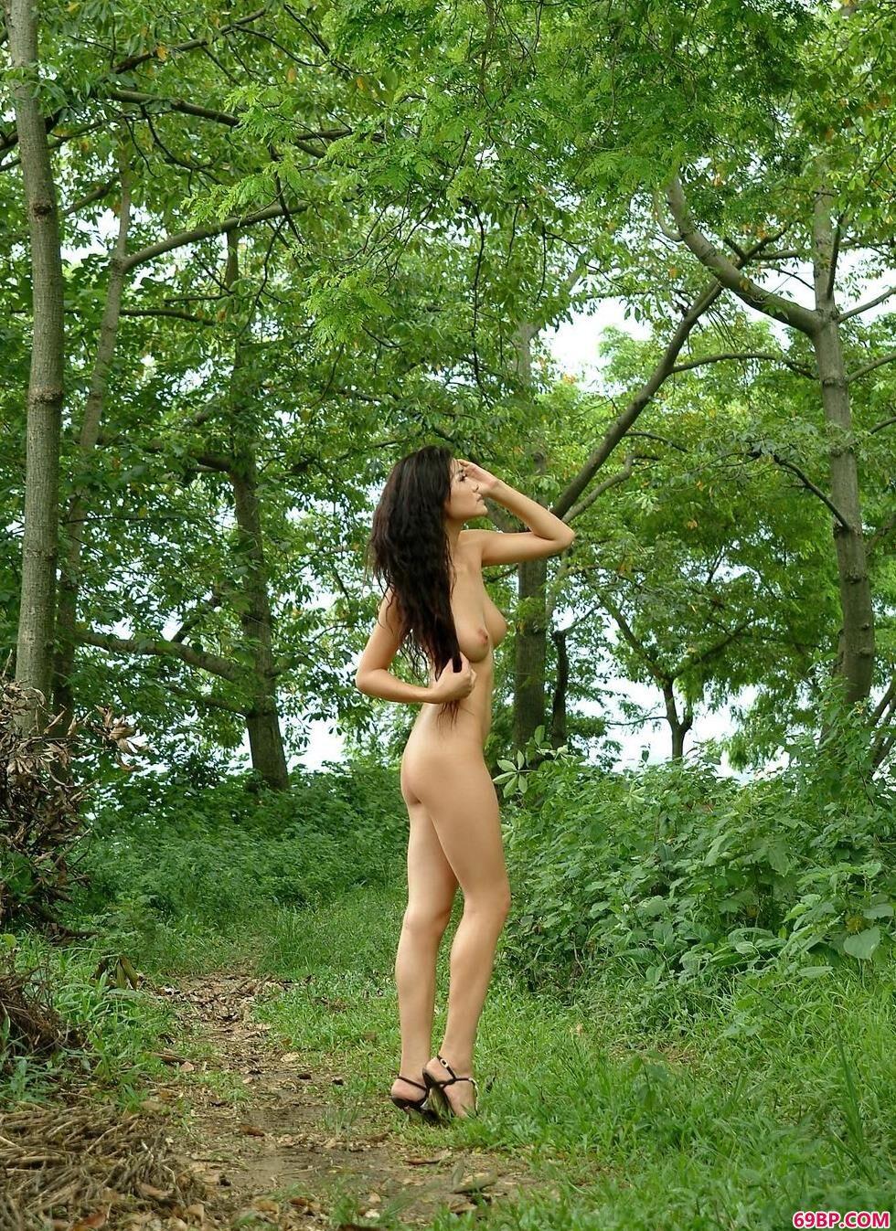 名模丽娜野外白马上的魅惑人体